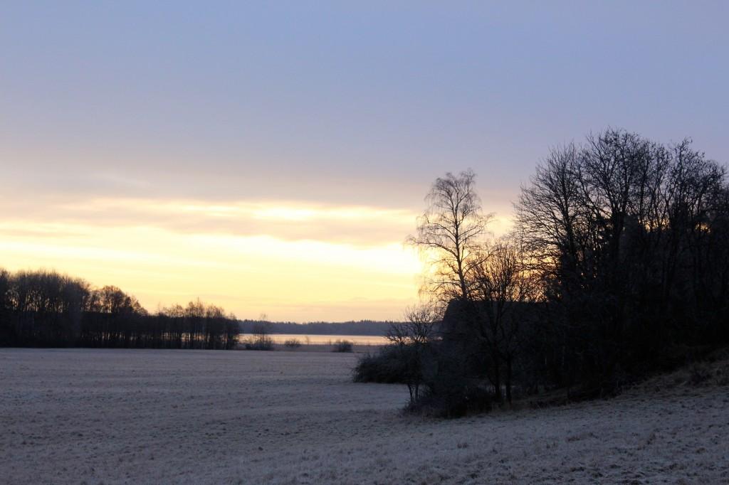 Vintermorgonfrångaloppbacken